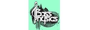 Bass Physics