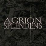 Agrion Splendens