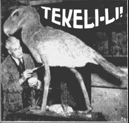 Tekeli-lirecords