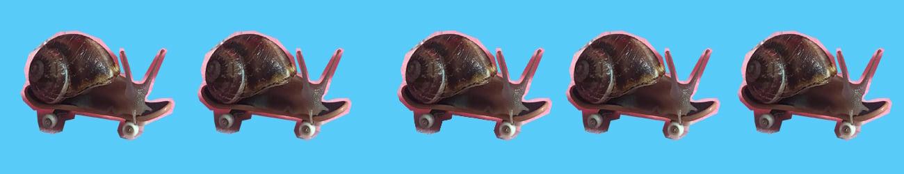snailposter