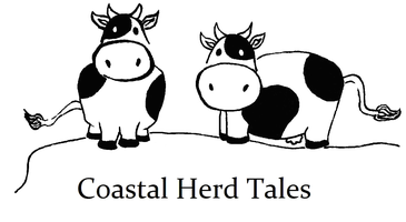 Coastal Herd Tales