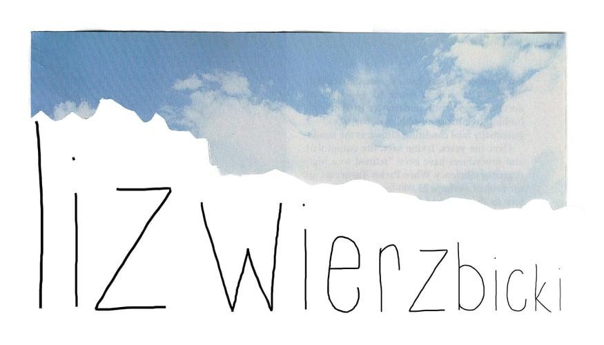 Liz Wierzbicki