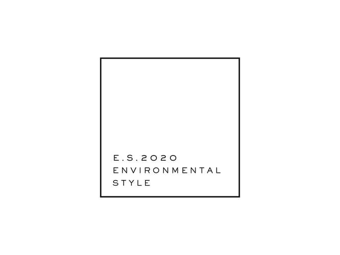 ES2020