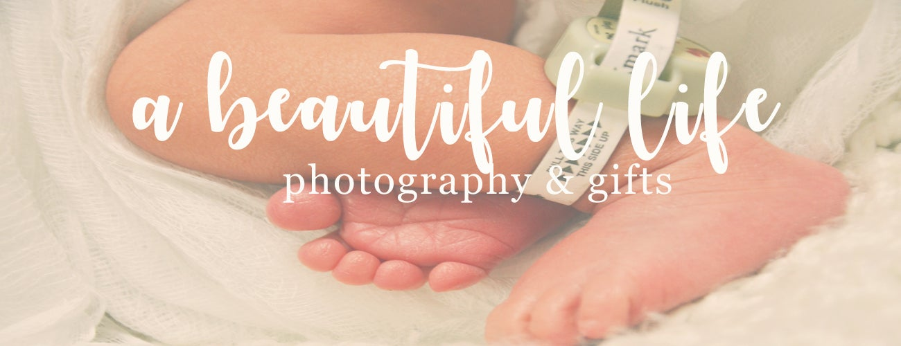 A Beautiful Life Photography
