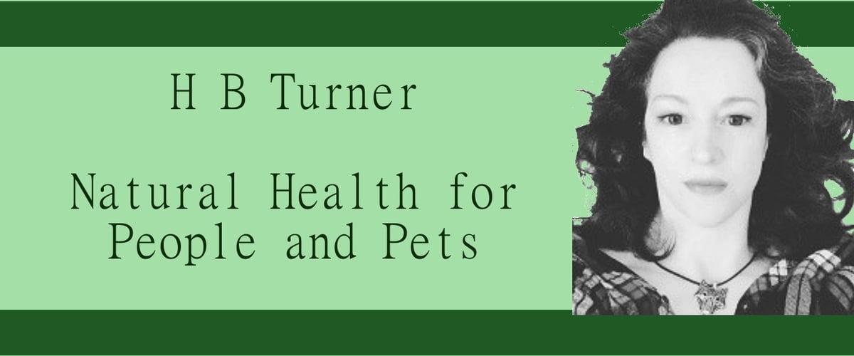 HBTurnerHealthcare