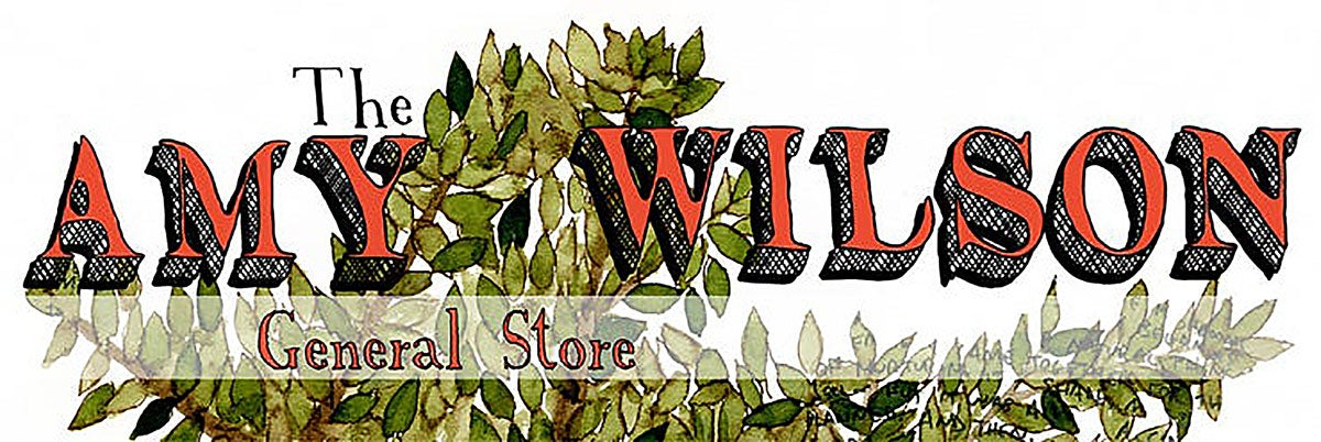 amy wilson (store)