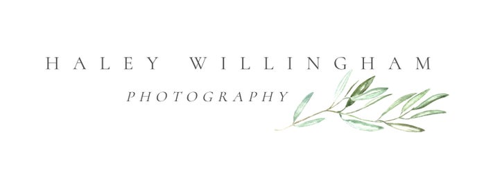 Haley Willingham PhotographyShop