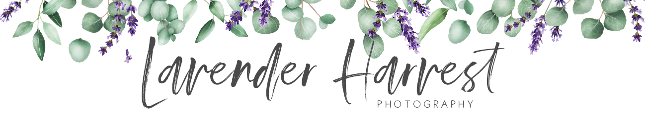 Lavender Harvest Photography  Home