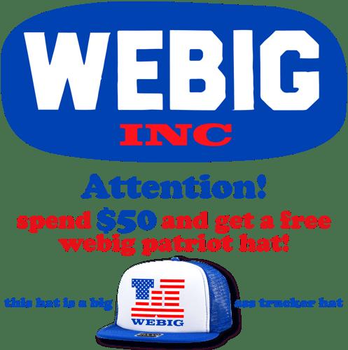 webiginc