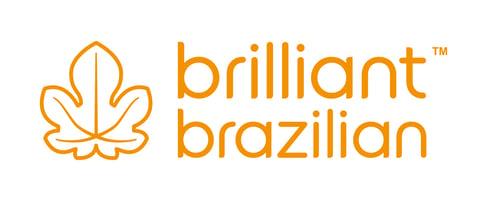 Brilliant Brazilian Home